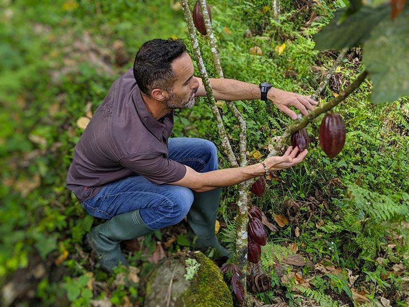 Stéphane Roux Maitre Chocolatier